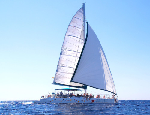 Catamaran up to 70 guests