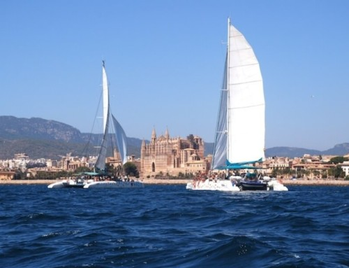Palma de Mallorca for the big catamarans