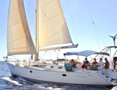 14m sailing yacht Can Pastilla